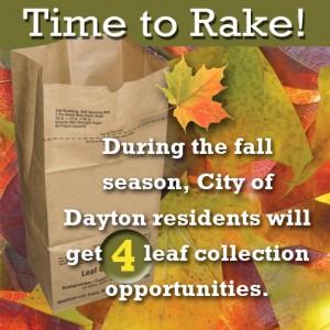 Dayton Leaf Collection
